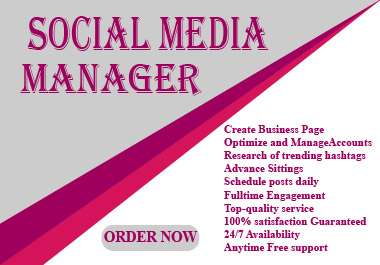 I Will be Your Social Media Manager Professionally