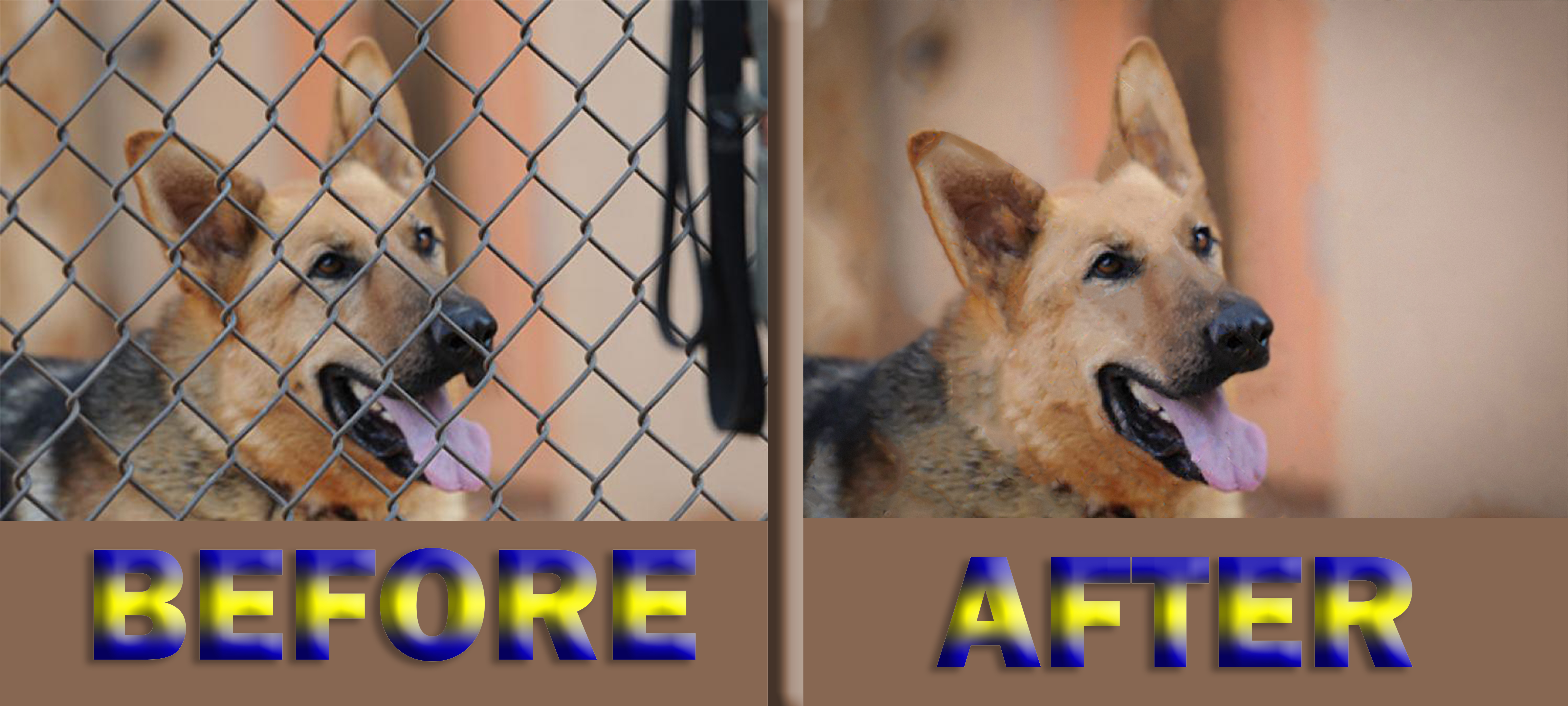 I will do background removal and removal fence