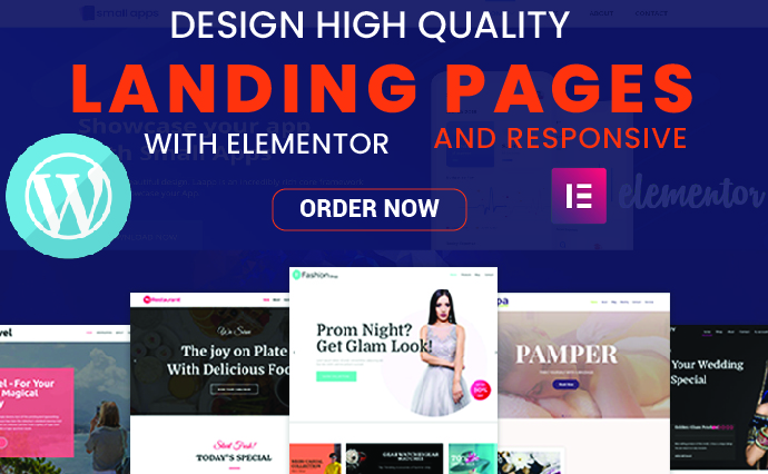 I will build premium responsive WordPress landing page with elementor