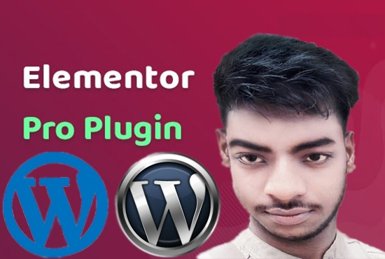 I will make wordpress website in elementor pro