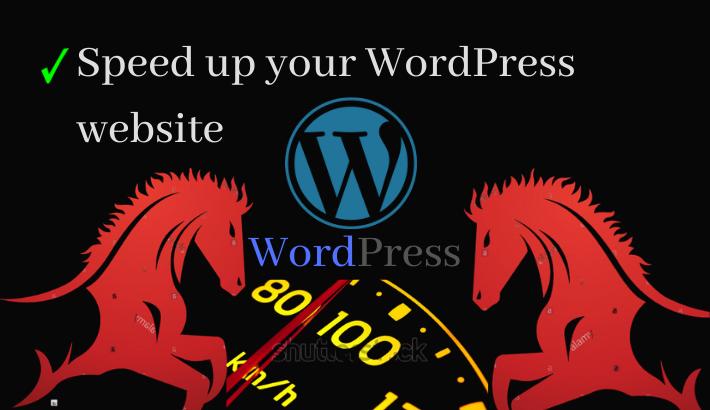 speed up your wordpress website 80+