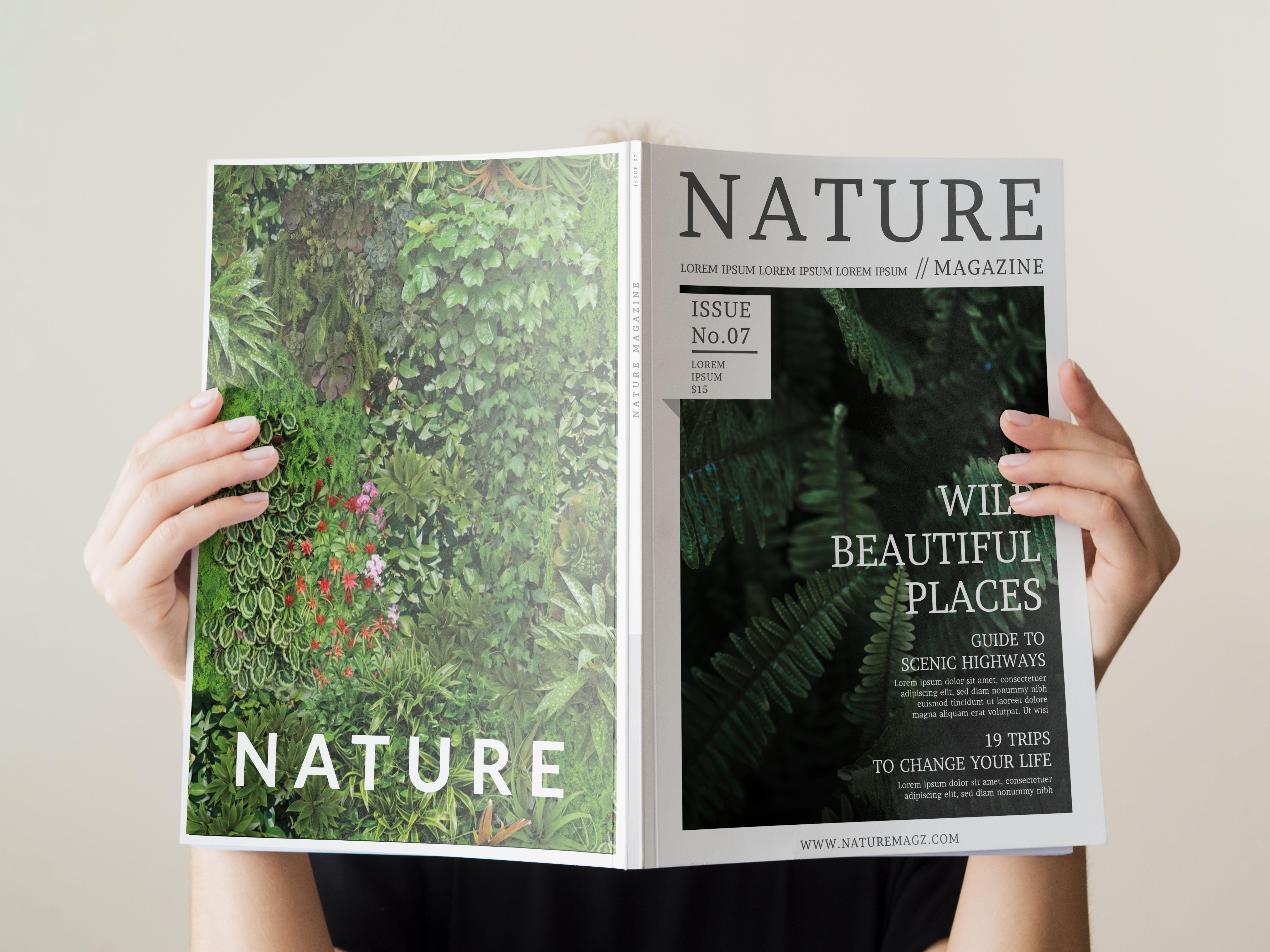 I will design brochure,  magazine,  catalog for your company