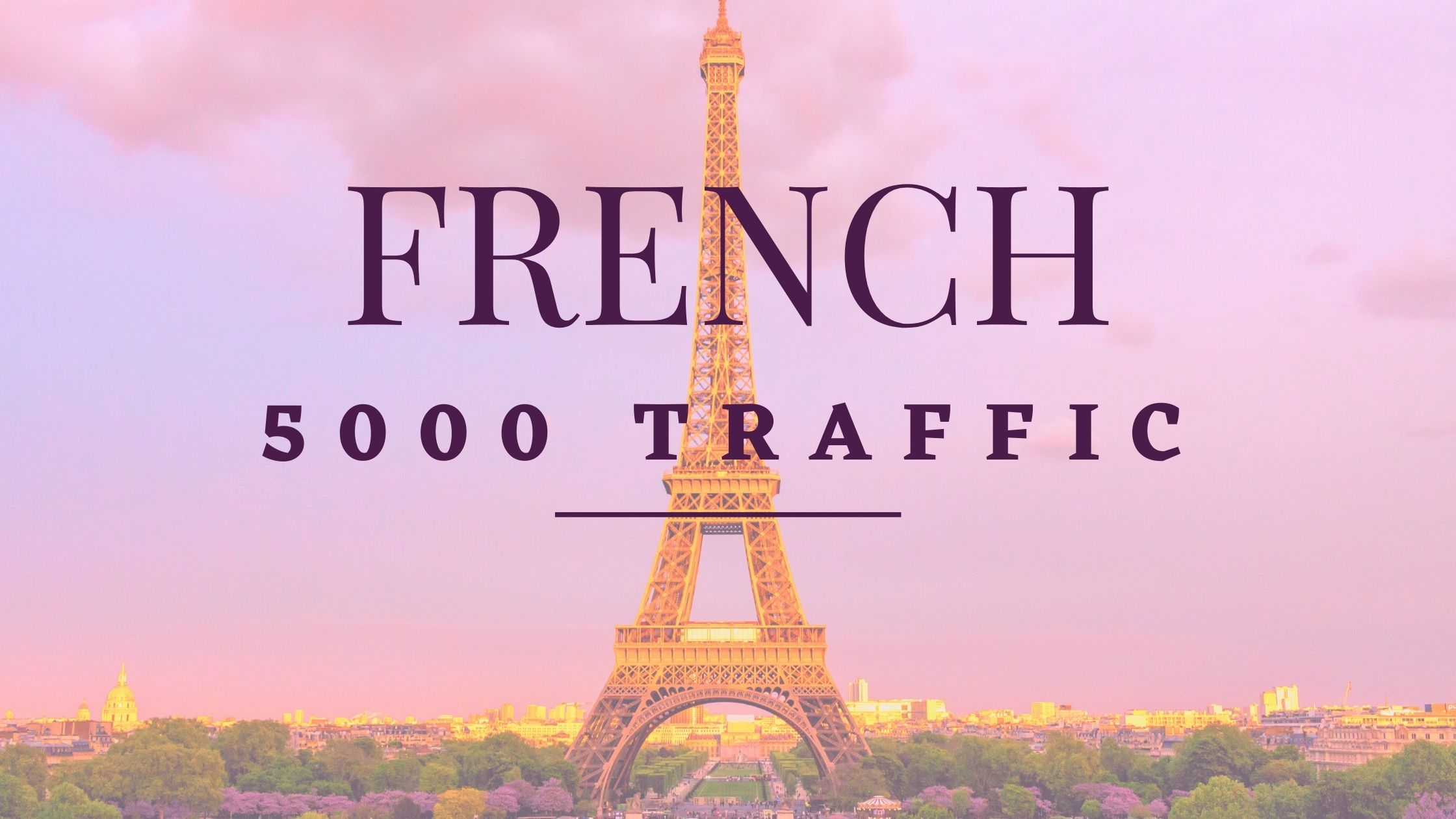 5000 Real French visitors for your website