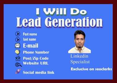 I Will Do 50 B2B Lead Generation,  Data Entry,  email collection
