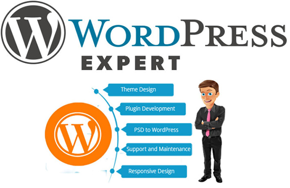 I will createprofessional WordPress website design