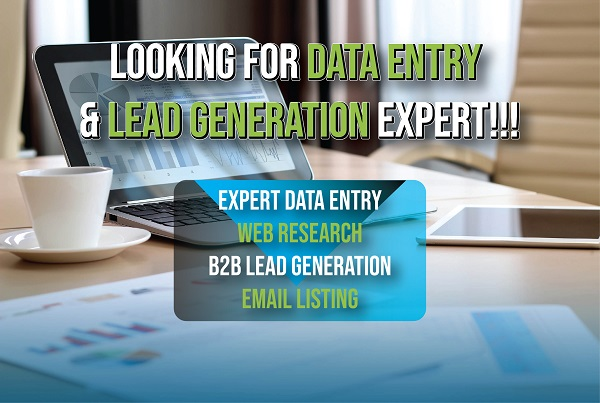 I will do professional data entry and lead generation