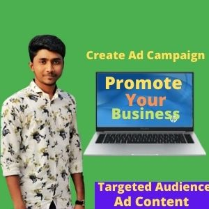 I will be your Facebook ads manager and promote your ads campaign