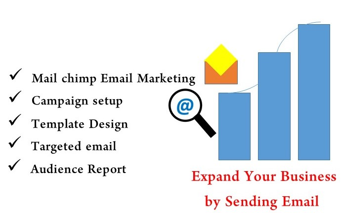 I will run your Email Marketing smoothly