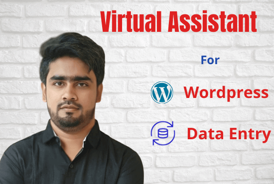 I will be your professional WordPress virtual assistant