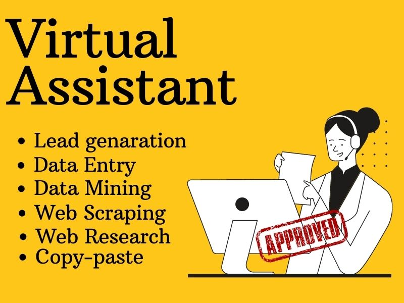 I will be your personal professional VIRTUAL ASSISTANT
