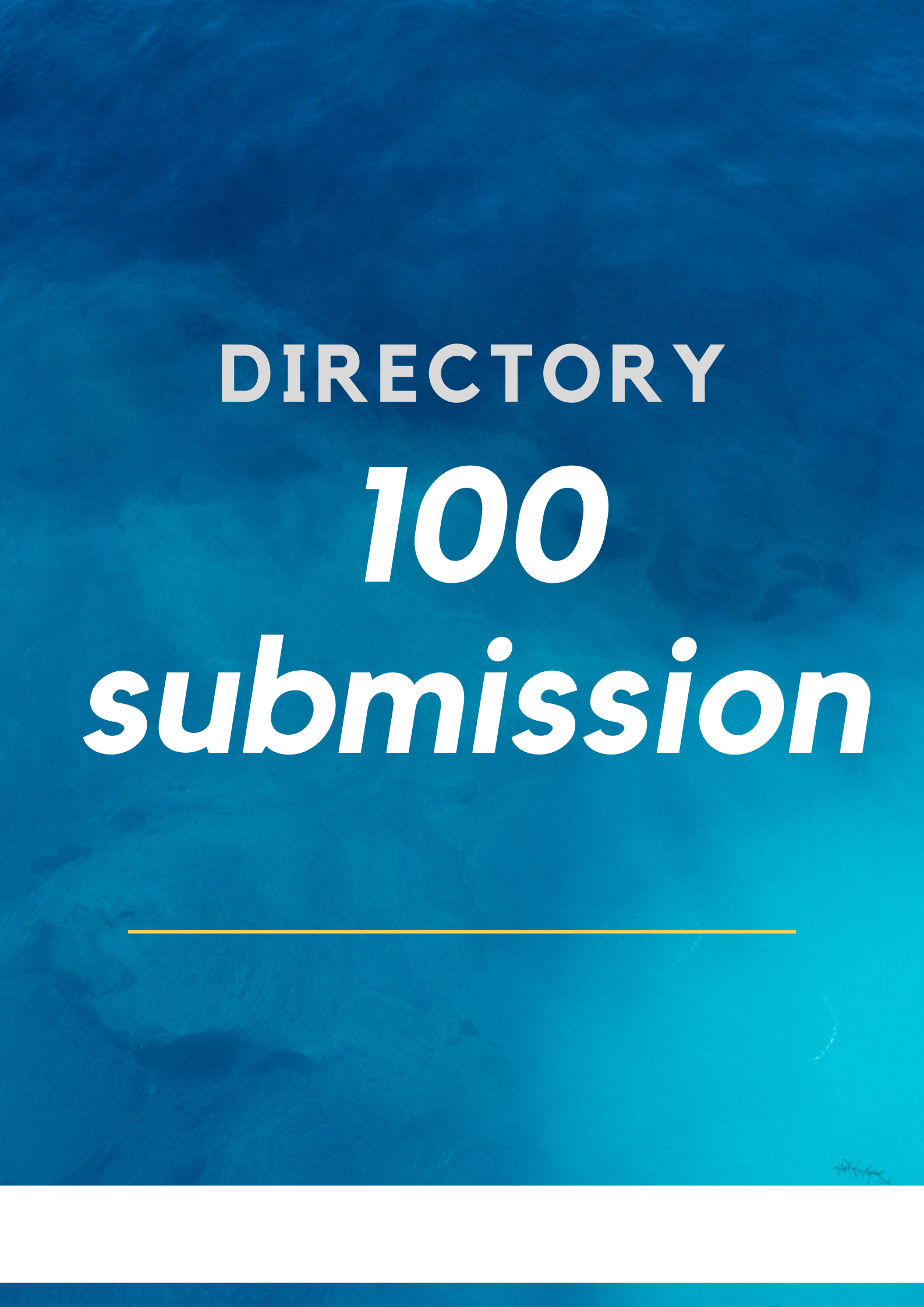 Provide 100 manually done directory submission to rank up site