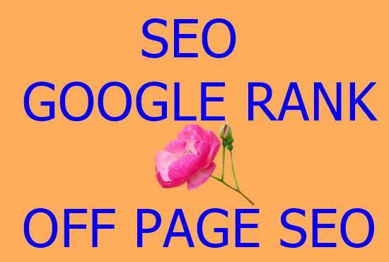 I will provide guranteed google 1st page ranking seo service