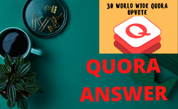 Guranteed targeted Traffic with 30 Quora answers.