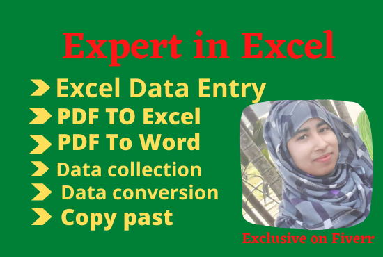 I will do excel data entry work for any company