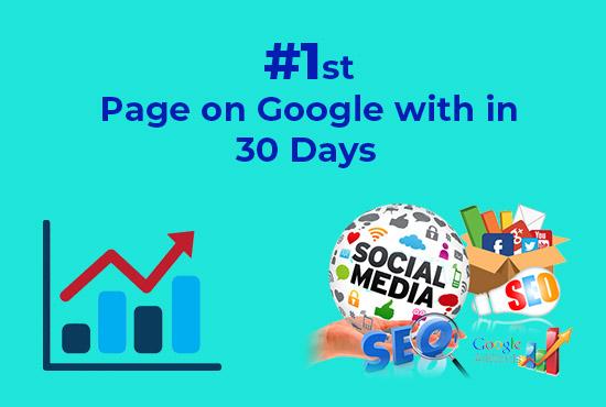 I Will provide Guaranteed Google 1st page ranking SEO service