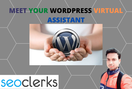 I will be your WordPress virtual assistant and manager