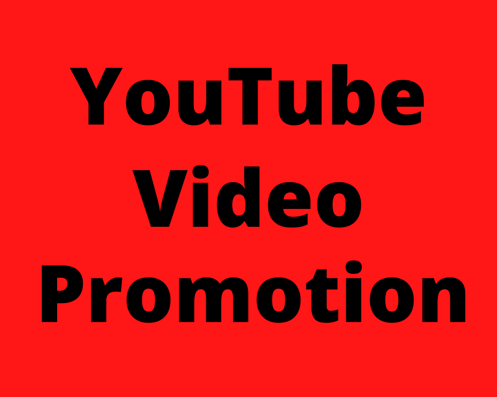 I will real YouTube promotion & video marketing
