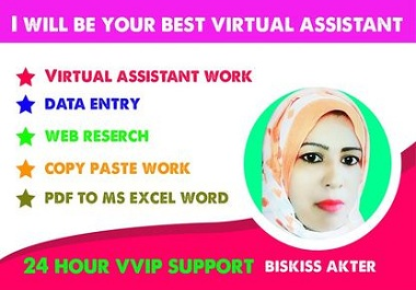 I will work for you as a virtual assistant