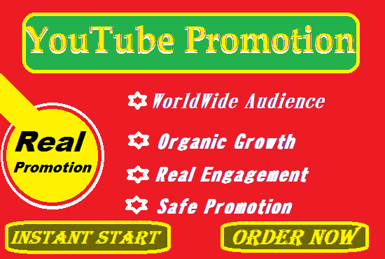 YouTube Promotion with Video Ads and Social Marketing