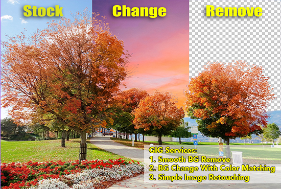 I will do photo editing,  photo retouching,  image resizing,  and remove background from 15 images