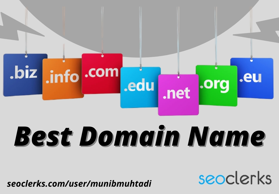I will find the best domain name for your business or blog