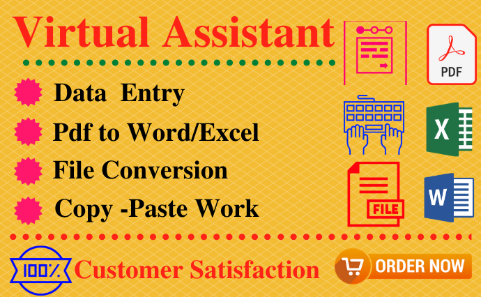 I will be your professional virtual assistant for data entry