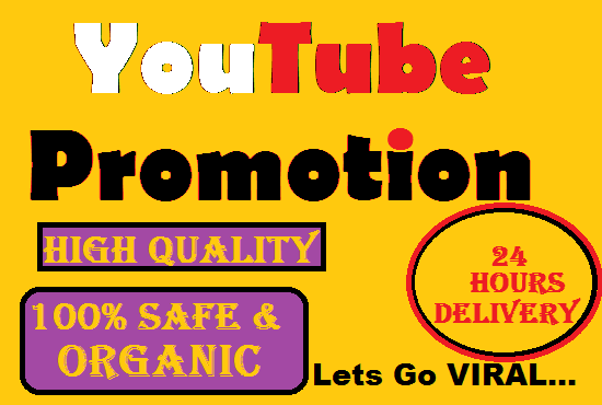 Do Only YouTube Promotion to get Best results