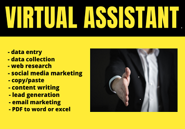 I will be your reliable skilled virtual assistant for any kind of tasks