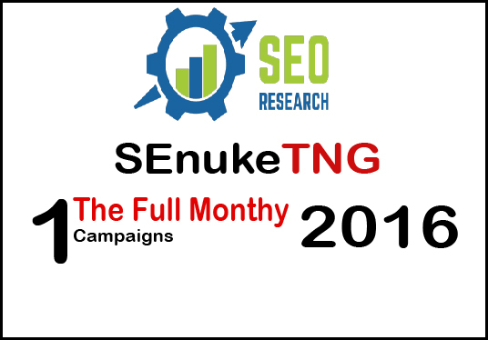 i will do SEnuke TNG - The full monty 2016 template