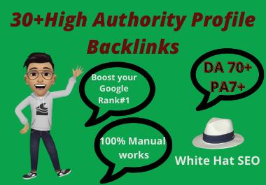 I WIll create 30+ High Authority Profile Backlinks manually for Website SEO