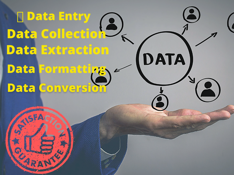 I will be a Virtual Assistant for your Data Entry Project