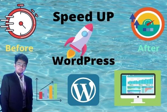 I will do speed up your wordpress website for google pagespeed insights and gtmetrix