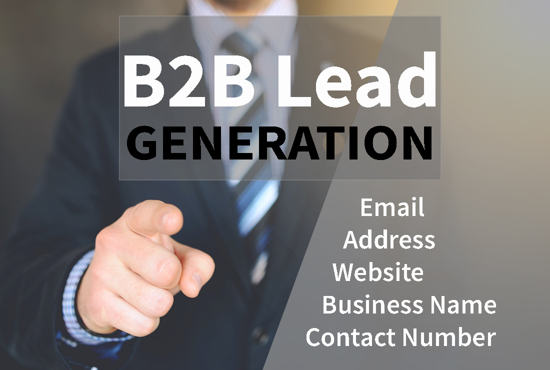 I will generate 100 B2B leads as your niche