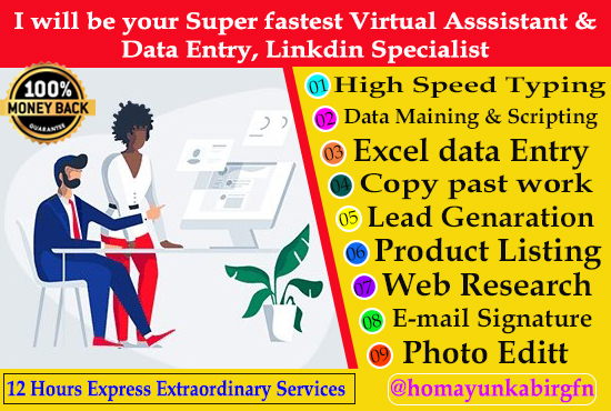 I will be your virtual assistant for data entry and web research,  excel