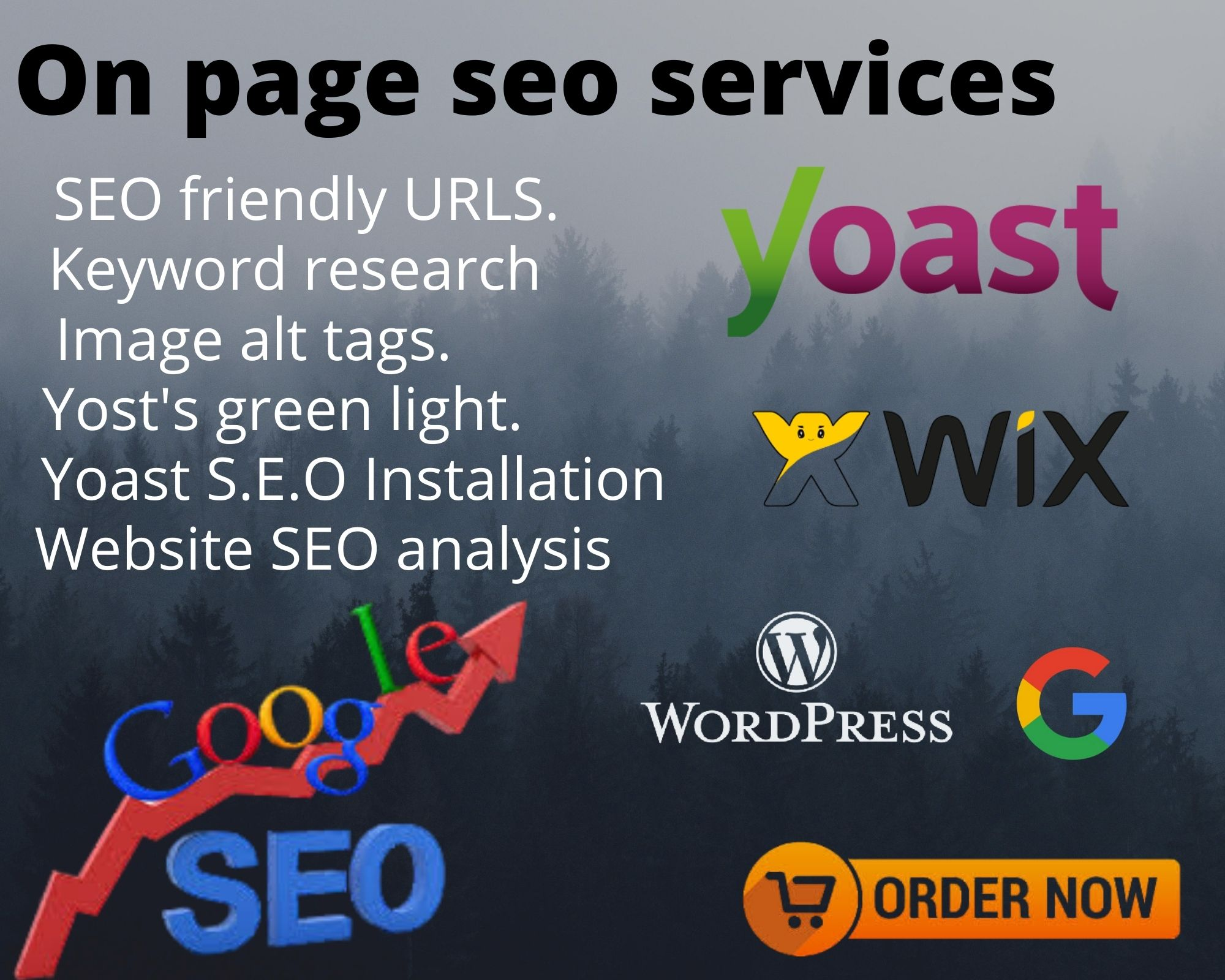 I will rank your WordPress website on page SEO service with yoast in 24 hrs