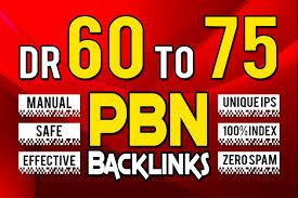 Get 5 DR 60+ Permanent Homepage PBN Backlink
