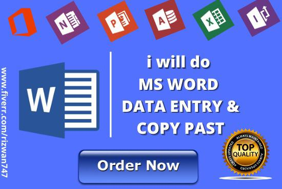 I will do ms word data entry,  copy paste