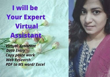 I will be Your Expert Virtual Assistant for your any work