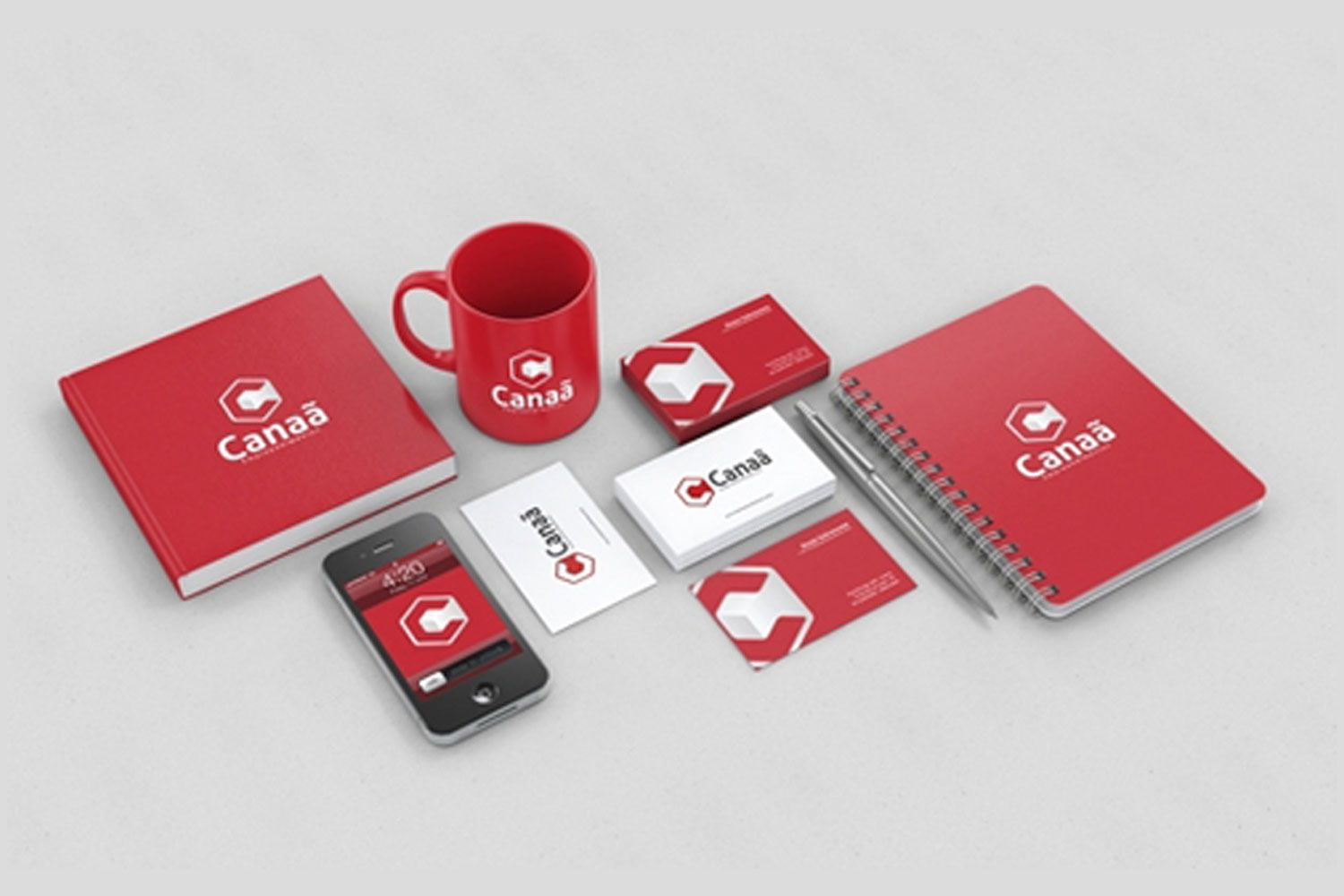 I will design your logo and brand style guildlines book