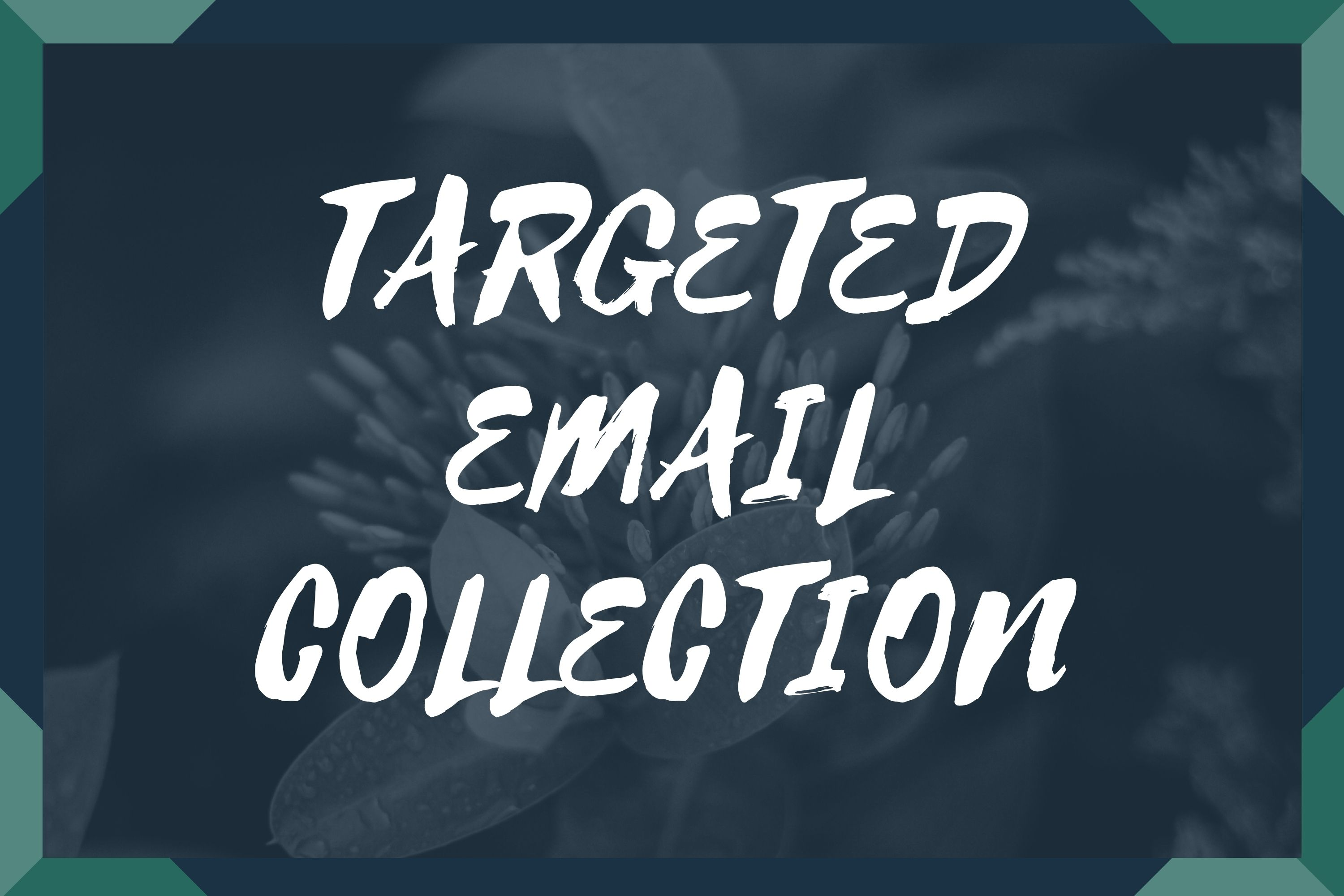 I will collect 5k Targeted emails for email marketing