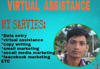 I will be virtual assistance for your work