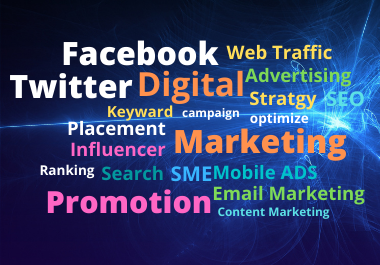 I will be your social media marketing manager for your business