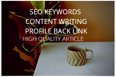 I will do your SEO KEYWORDS CONTENT WRITING Profile-Backlinks HIGH QUALITY ARTICLES