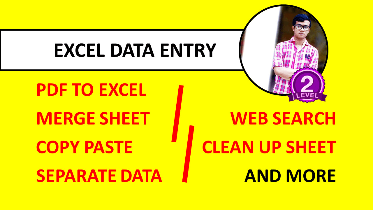 I will do any kind of Microsoft excel data entry project