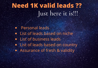 1K lead generation based on Niche