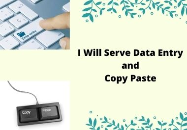 I Will Serve Data Entry and Copy Paste