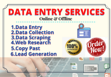 I Will Provide you DATA ENTRY SERVICES