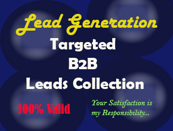 I will do 100 B2B Lead Generation with 100 valid email list.