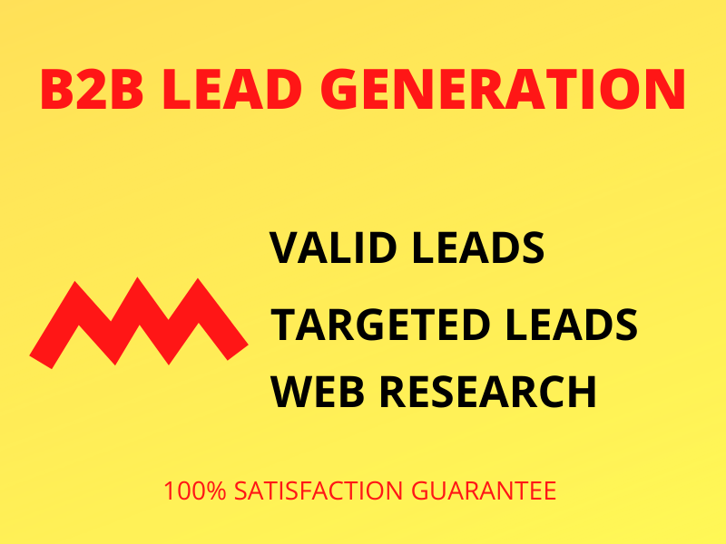 I will do B2B targeted niche lead generation