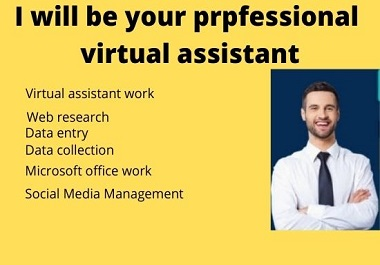 I will be your professional virtual assistant and do related of this work